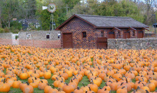 Halloween October Events in Southeast Michigan - Metro Parent - October 2013 - Detroit, MI