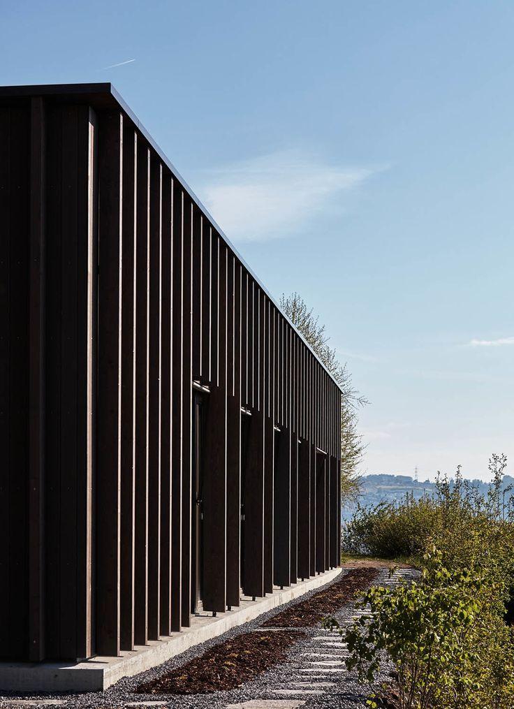 Am Waldrand mit Seeblick - Schweizer Geburtshaus von dolmus Architekten