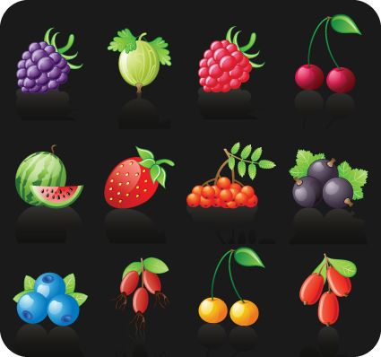 Icons different Fruits vector