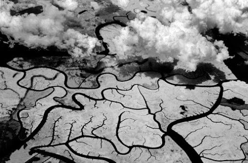 The World's Largest Delta - Ganges River Delta Sundarbans, West Bengal, India…