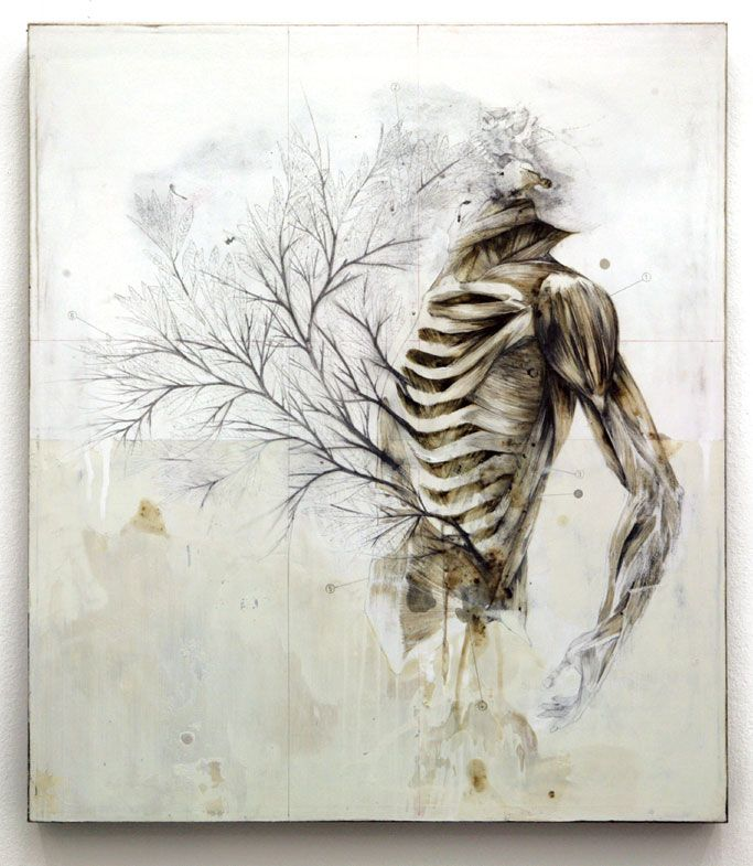 Anatomical Artwork of Nunzio Paci; Bologna, Italy {trees, nature, skeleton, muscles}
