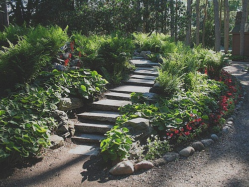 Divided Path Photo By Sewz4fun Via Flickr Munsinger Clemens Gardens In St Cloud Mn July