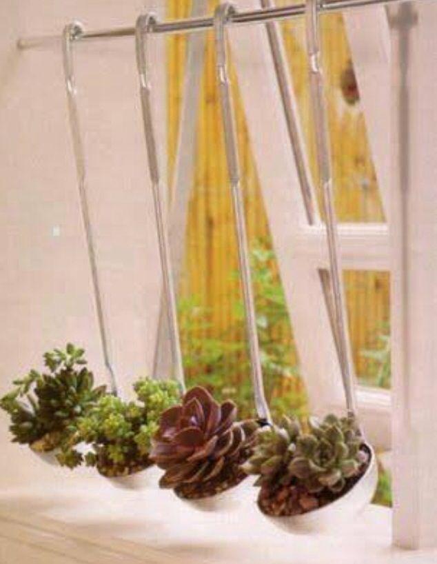 124 best Succulent Terraniums images by Rachi VJ on Pinterest ...