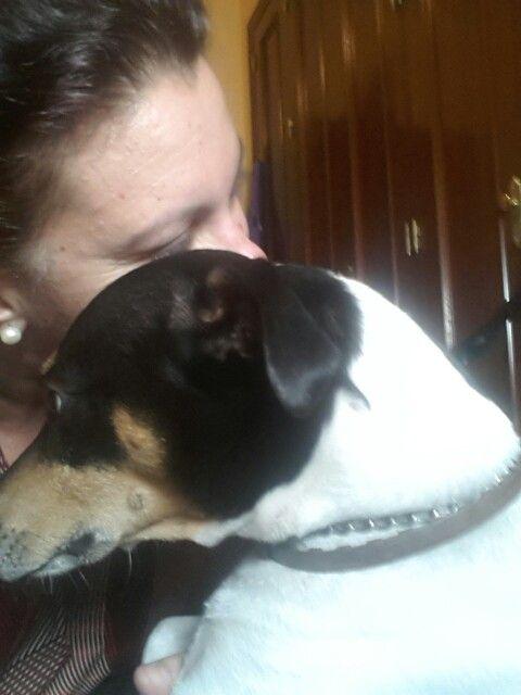 Mis buenos días. #NosinJacko #bodeguero #dogs