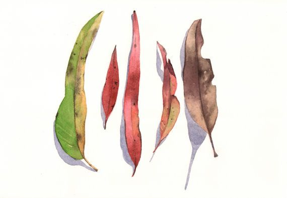 Eucalyptus Leaves Painting E026  print of by Splodgepodge on Etsy, $15.00