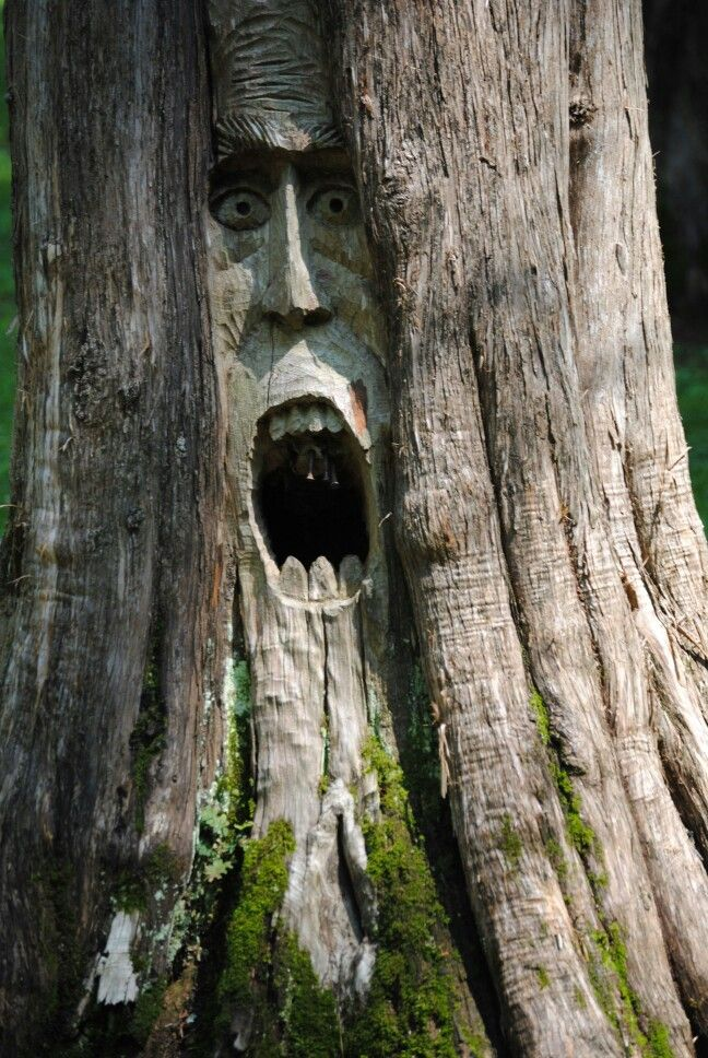 Best tree spirits images on pinterest carving