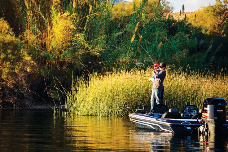 1000 images about western arizona on pinterest lakes for Fishing lakes in arizona