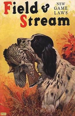 B 1932 Bird Hunting Gun Dog Upland Game Springer Shooting Shotgun Poster | eBay