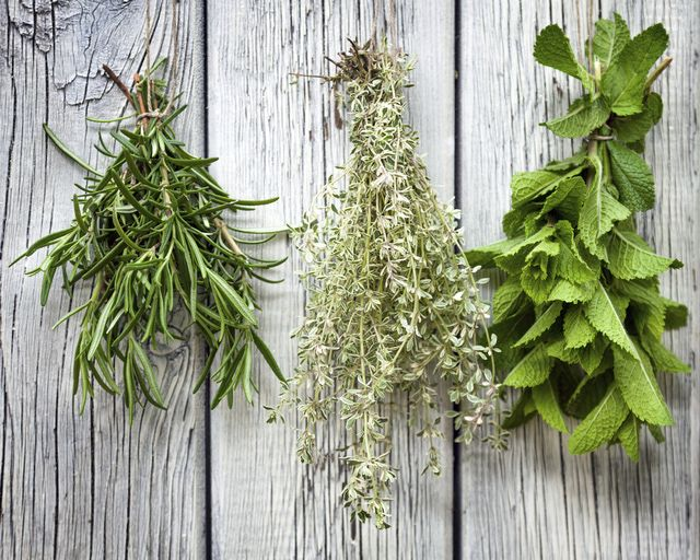 What You Should Know About Magical Herbs: 10 Magical Herbs to Have on Hand