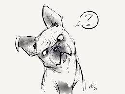 french bulldog drawing - Google Search