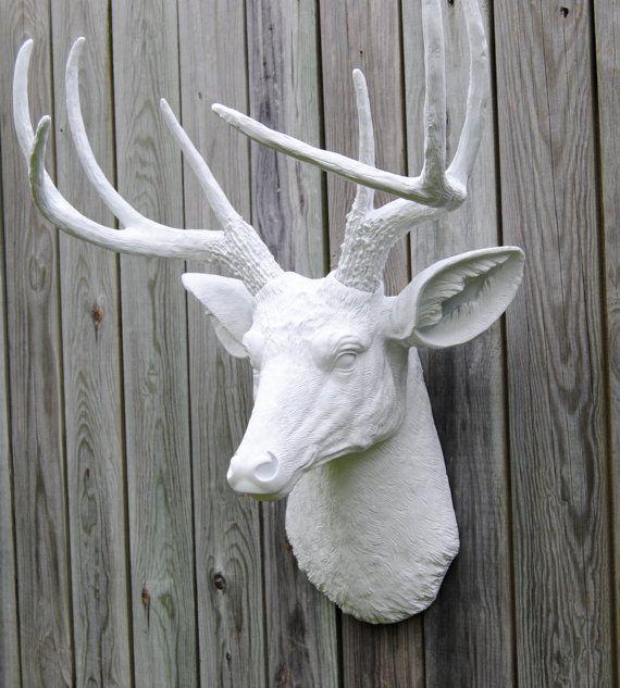 White Deer Head Wall Decor 72 best deer antlers images on pinterest   deer antlers, deer