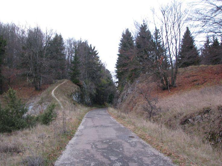 Olasz-kapu sziklaátvágás (Szilvásvárad közelében 4.9 km) http://www.turabazis.hu/latnivalok_ismerteto_4964 #latnivalo #szilvasvarad #turabazis #hungary #magyarorszag #travel #tura #turista #kirandulas
