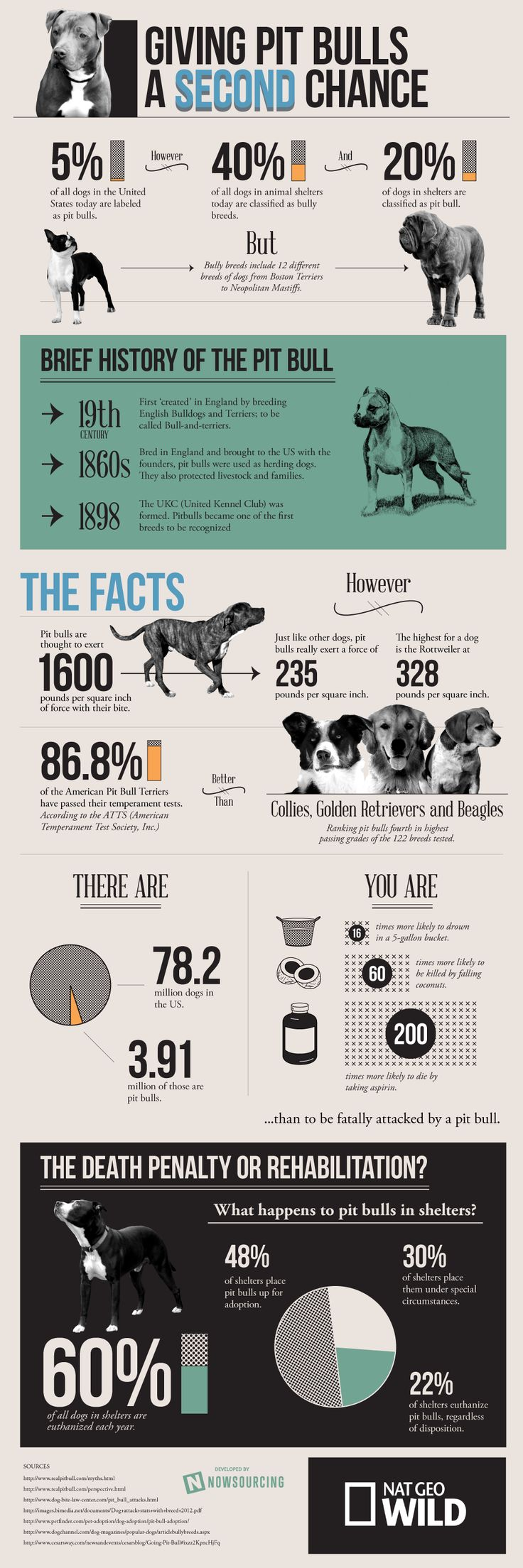 """This infographic provides a deeper look into the truth about the pit bull breed.""  Where do you stand on this? ~ any bad dog, regardless of breed, starts with bad owners. Love my Pitt."