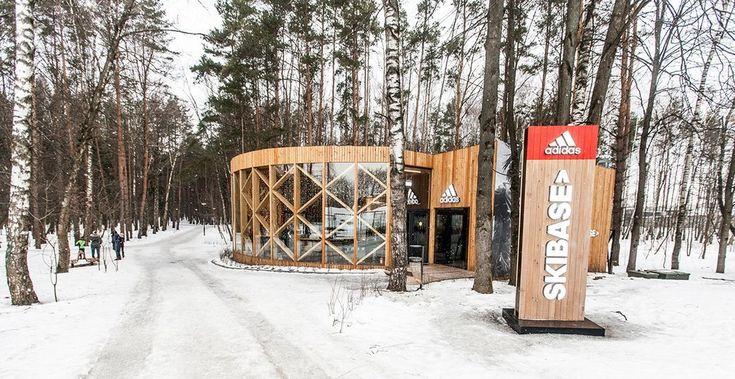 Ход коньком: Почему беговые лыжи — главный спорт этой зимы — The Village — The Village