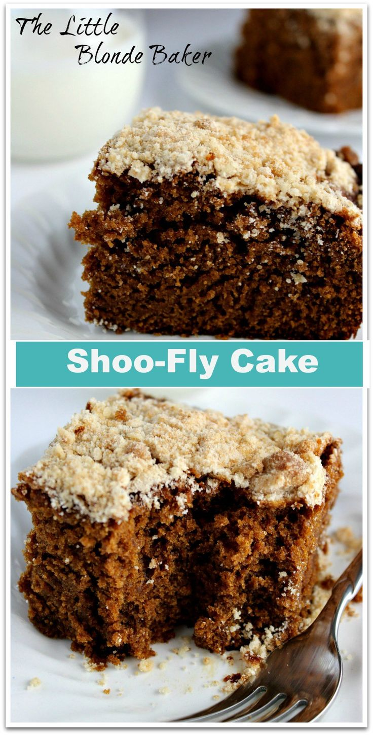 Shoo-Fly Cake. A very moist and rich molasses tasting cake. A great Pennsylvania Dutch recipe.