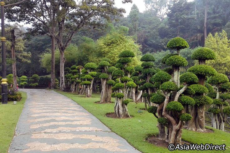 Lake Gardens in Kuala Lumpur - Kuala Lumpur Attractions