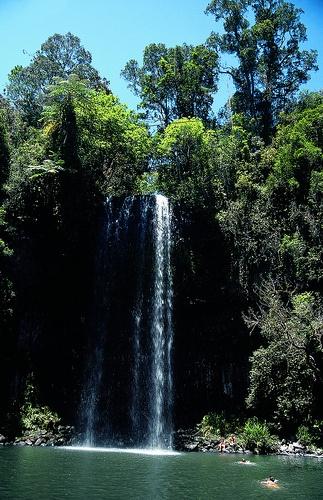 Swim under waterfall in kakadu national park