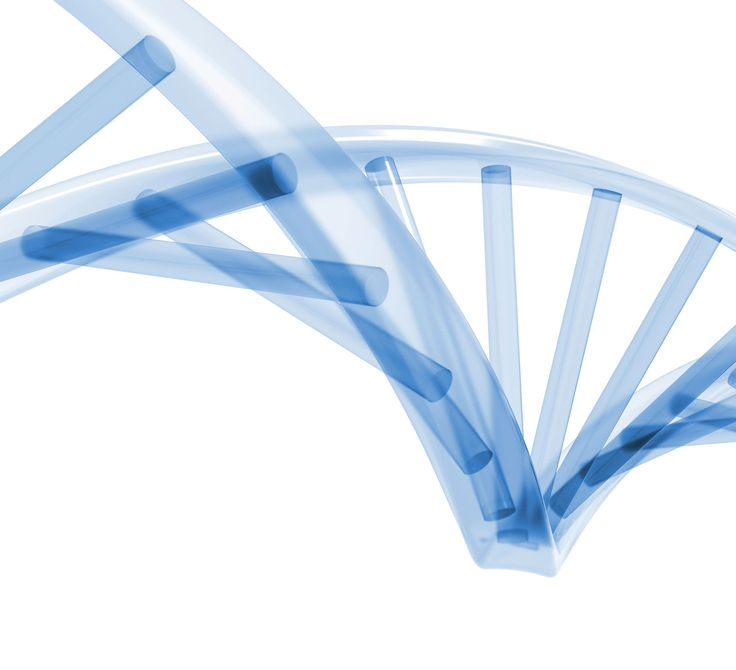 EVERYTHING COOL WITH NATIONAL DNA DAY JAMES WATSON AND FRANCIS CRICK PUBLISHED A LETTER ON THE SCIENCE JOURNAL NATURE ANNOUNCING THEIR DISCOVERY OF THE STRUCTURE OF DEOXYRIBONUCLEIC ACID (DNA).   #DNA #genome #nationladnaday #science