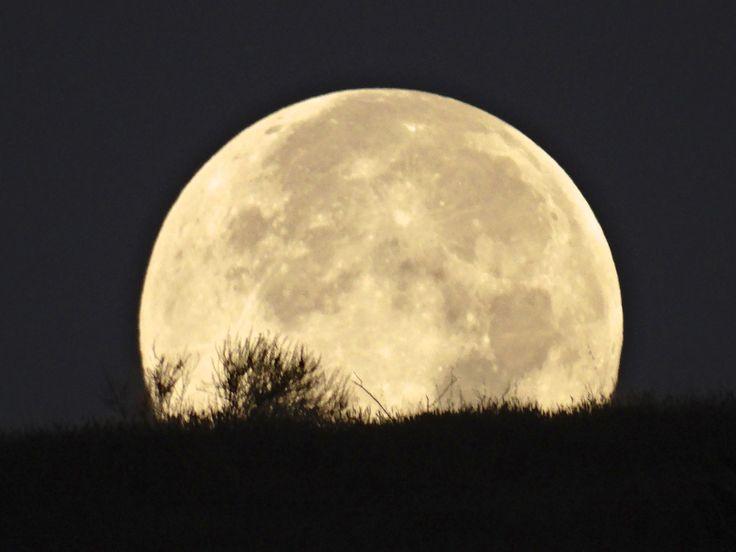 Full Moon Calendar for 2019 | When is the Next Full Moon?