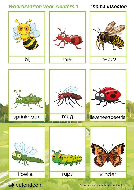 Woordkaarten 1 voor kleuters, thema insecten, kleuteridee, free printable.