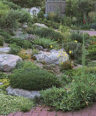 1000 images about slope plantings on pinterest terraced garden gardens and hillside landscaping. Black Bedroom Furniture Sets. Home Design Ideas