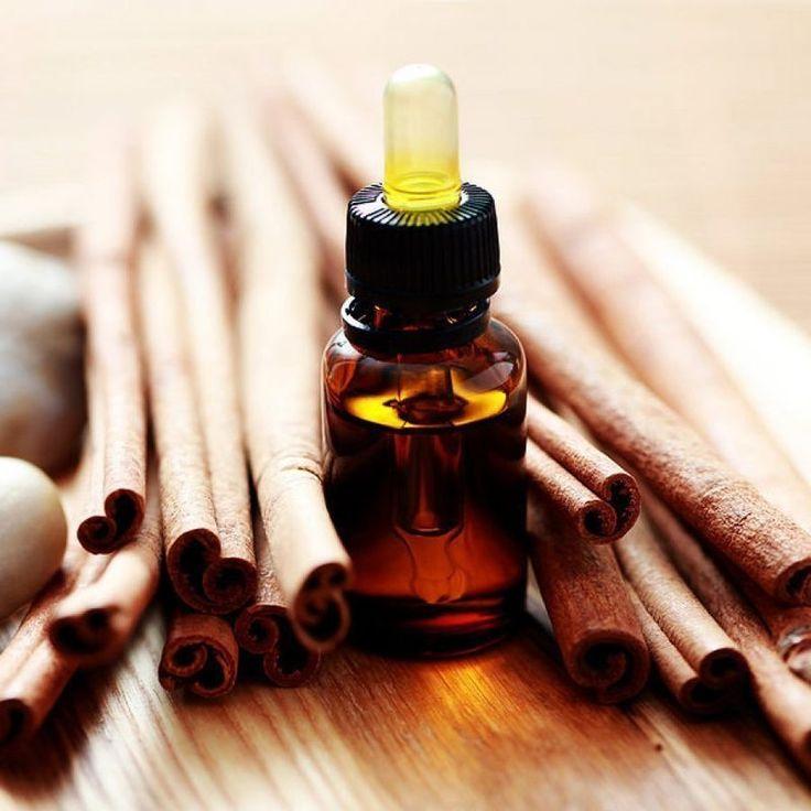 Целебное масло из корицы: как его приготовить и в чем его польза