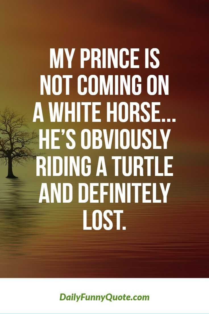 Top 370+ Funny Quotes With Pictures & Sayings – Anna Cole