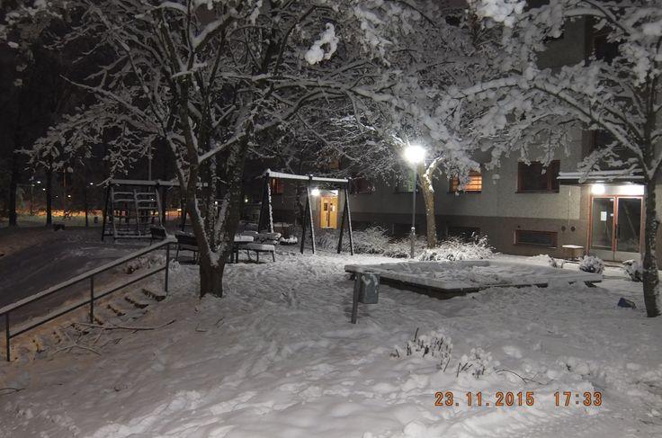 Зима на нашем дворе.