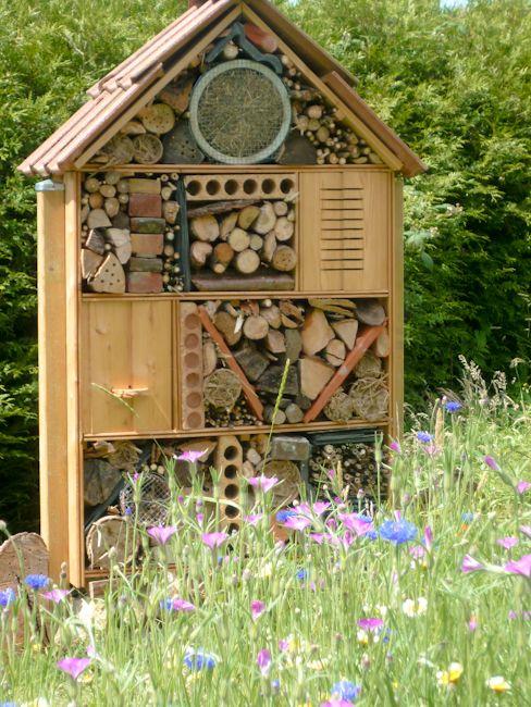 club nature du coll ge l 39 oiseau blanc landscape hardscape escape pinterest le coll ge. Black Bedroom Furniture Sets. Home Design Ideas