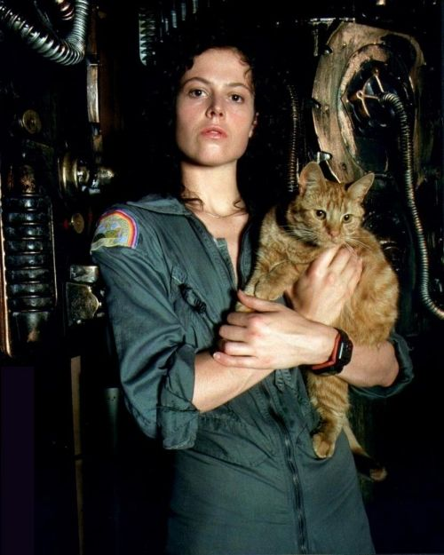 Actress Sigourney Weaver with cat as character in Alien(1979)