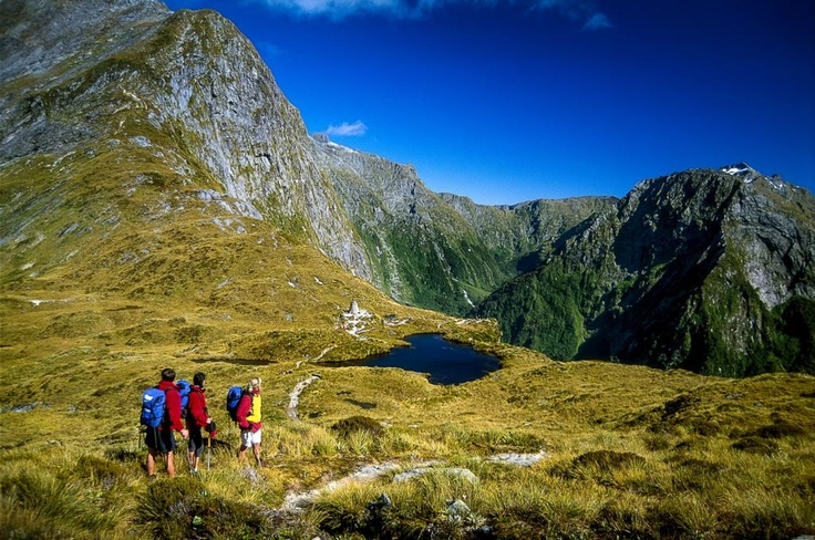 Milford Track Guided Walk - Ultimate Hikes New Zealand
