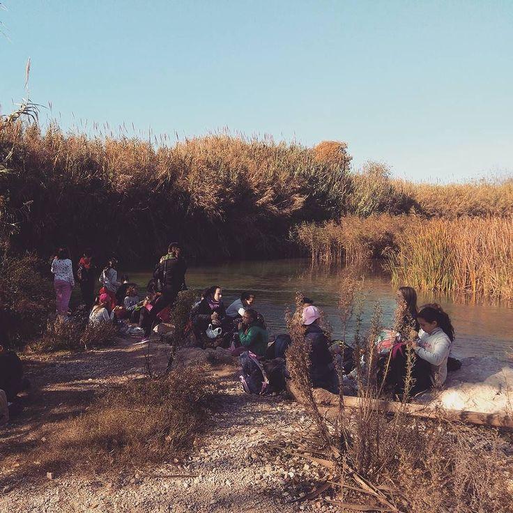 Maravilloso sol en la #visitaguiada en el Parque Natural junto a 52 alumnos del Colegio Luis Vives de Paiporta