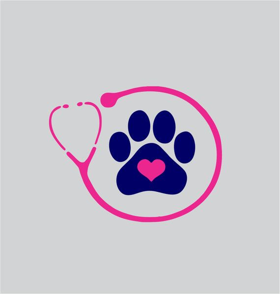 Veterinarian or Vet Tech Stethoscope Vinyl Decal by ChicksDigVinyl, $5.00