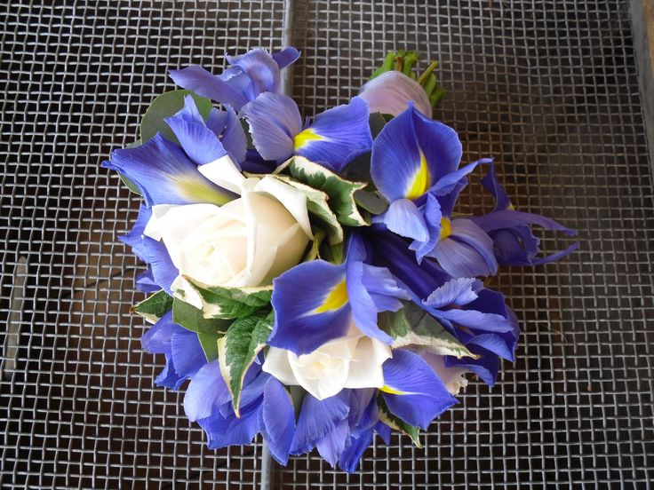bouquets for periwinkle blue bridesmaid dresses | blue and white wedding bouquet 1000s of wedding flower pictures