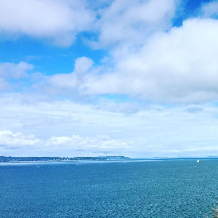View from the top of hill. #pugetsound #sailboat #sunnyday #seattle #discoverypark #discoverypark #exploring by irawaywalker