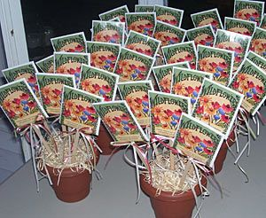 wedding favor flower seeds 40 best images about seed packet ideas on 9453