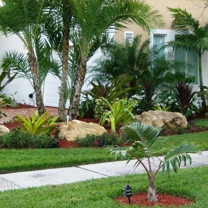 17 Best images about Palm Tree Landscae on Pinterest ... on Backyard Landscaping Ideas With Palm Trees id=91189