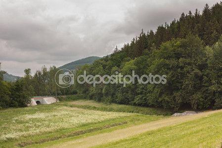 Zbiornik na rzece Kaczawa — Zdjęcie stockowe © EwelinaBanaszak #108170452