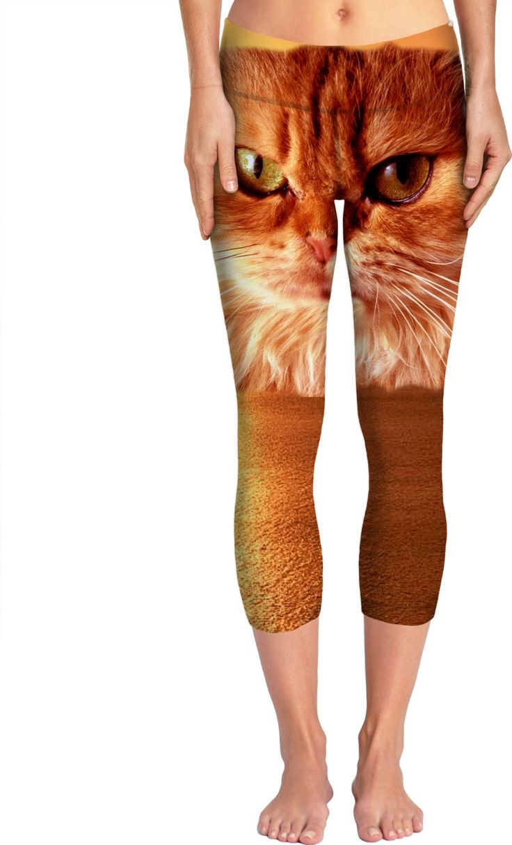 Check out my new product https://www.rageon.com/products/orange-cat-yoga-pants?aff=BWeX on RageOn!