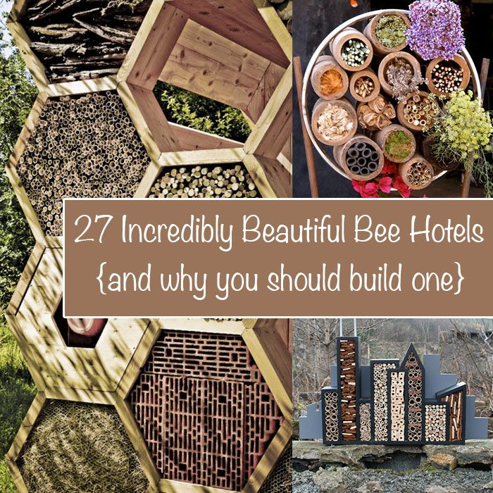 Best 25 Bee Hotels Ideas On Pinterest