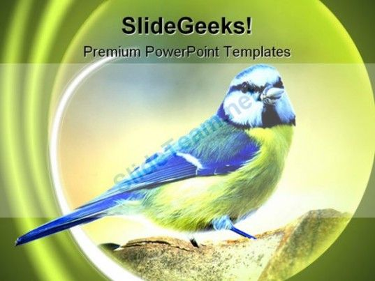 446 best Animals Powerpoint Templates Themes Backgrounds images on - nature powerpoint template