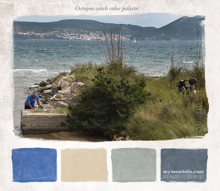 Octopus catch color palette | My Messinia