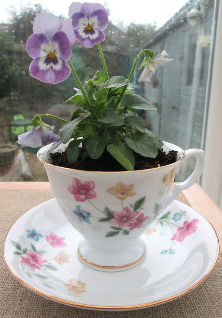 Tea cup planter ~ vintage china tea cup and saucer, ceramic plant pot, upcycled recycled repurposed, original gifts for Mothers Day, wedding by BlueBoxStudio on Etsy