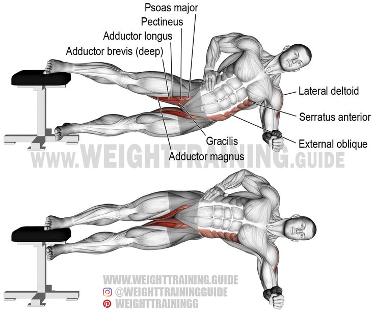 Side plank hip adduction. A compound exercise. Target muscles: Adductor Magnus, Adductor Longus, and Adductor Brevis. Synergists: Pectineus, Gracilis, Gluteus Maximus, Psoas Major, Obliques, Quadratus Lumborum, Iliocastalis Lumborum, Iliocastalis Thoracis, Lateral Deltoid, Supraspinatus, Middle and Lower Trapezius, and Serratus Anterior.