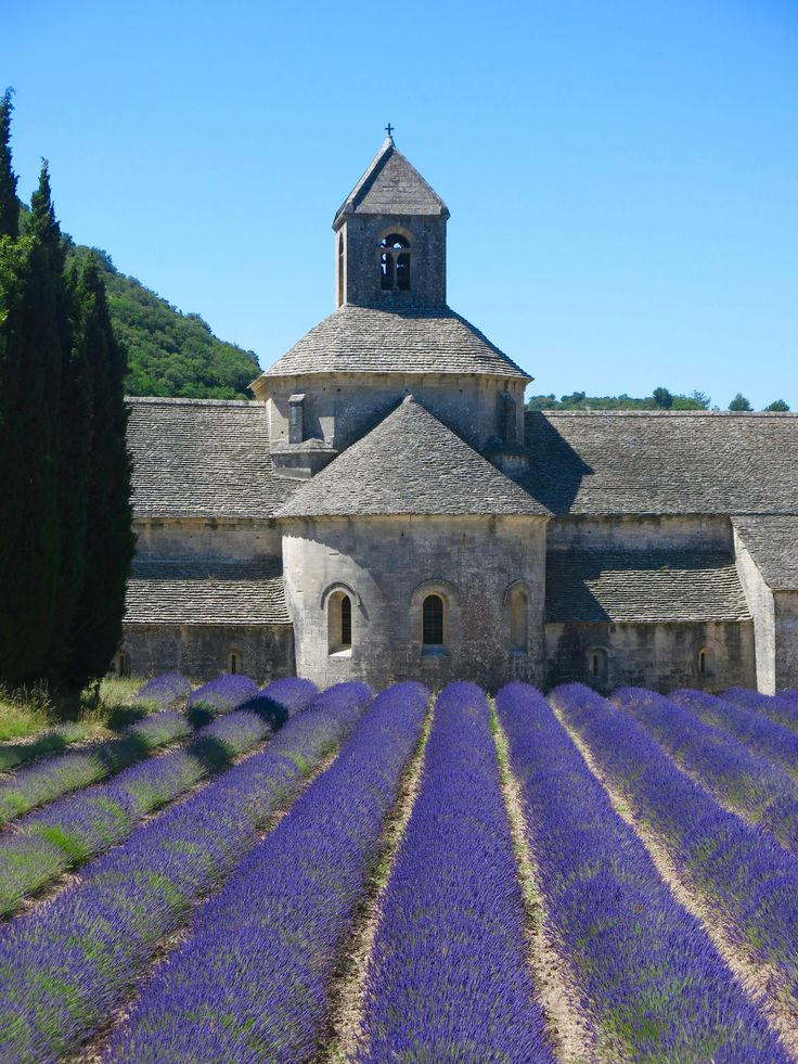 Abbazia di Sénanque #francia #france  #travelblogger