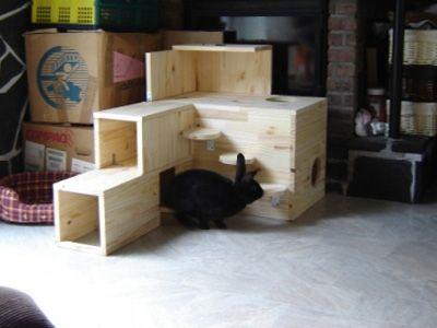 Construire une cabane pour son lapin marguerite et cie for Construire cabane lapin