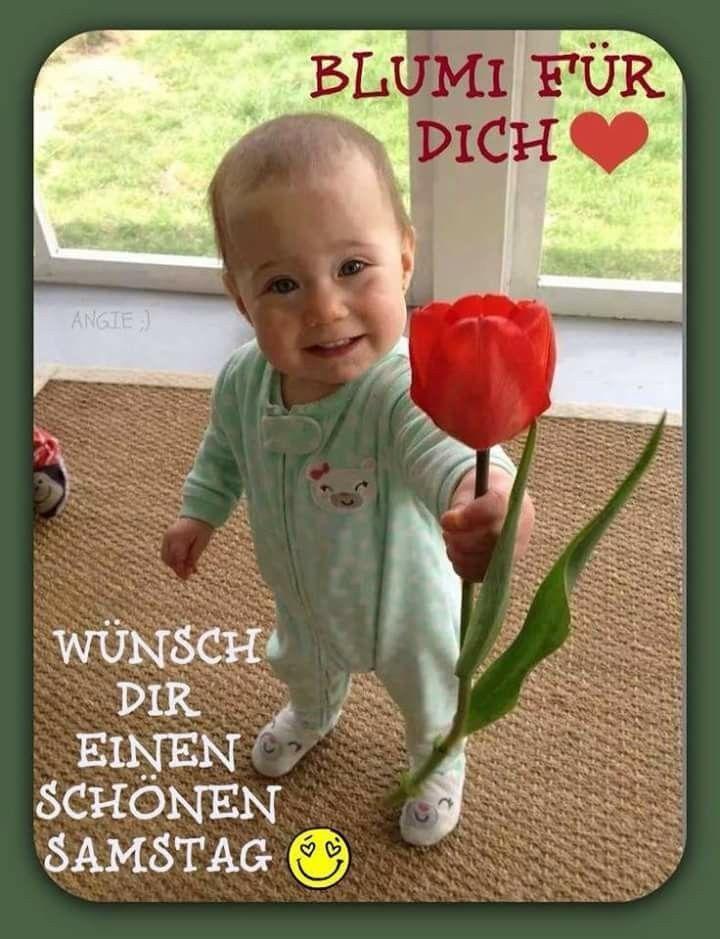 Pin Von Picshareonline Site Auf All Freitag Spruche Lustig Wochenende Lustig Samstagsgrusse