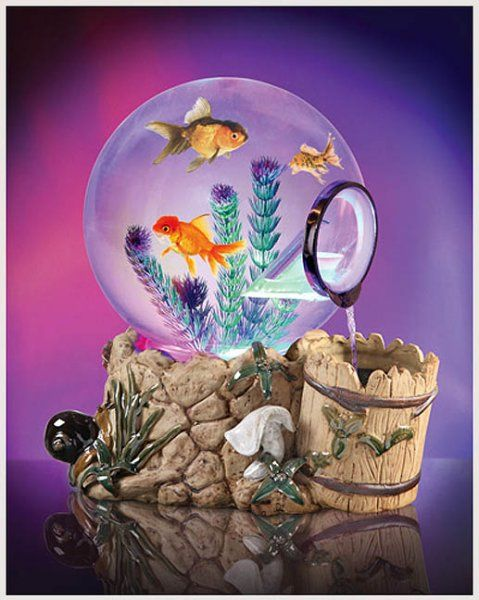 1000 ideas about betta fish bowl on pinterest betta for Unique betta fish tanks