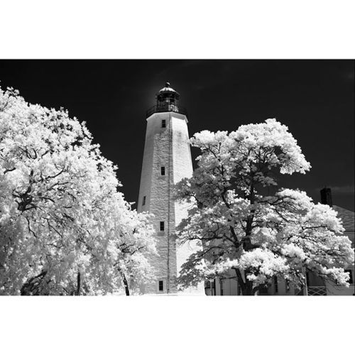 Check out some samples of infrared photography taken with the sd Quattro! The IR cut filter is easily removable on the camera! . . . #sigmaphoto #infraredphotography #infrared #sdquattro #foveon #landscapes @jackhowardphotography via Sigma on Instagram - #photographer #photography #photo #instapic #instagram #photofreak #photolover #nikon #canon #leica #hasselblad #polaroid #shutterbug #camera #dslr #visualarts #inspiration #artistic #creative #creativity