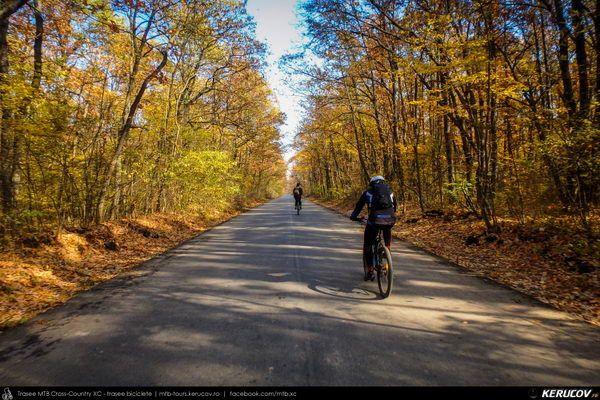Trasee cu bicicleta MTB XC - Traseu SSP Bucuresti - Calugareni - Mihai Bravu - Comana - Gradistea - 1 Decembrie - Bucuresti de Andrei Vocurek
